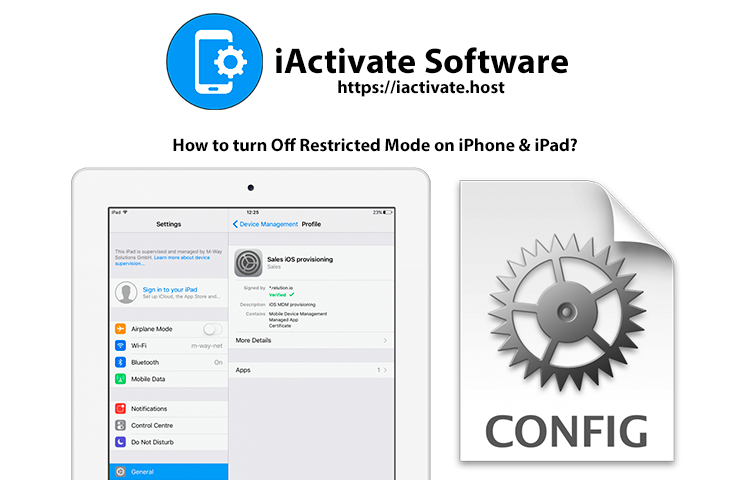 How to turn Off Restricted Mode on iPhone