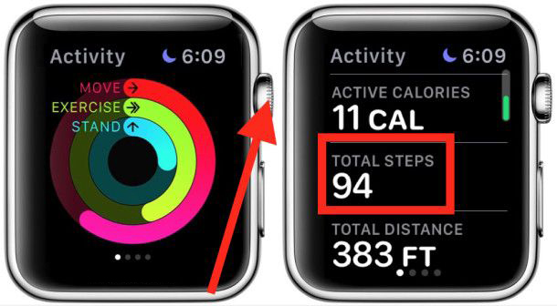 Apple Watch View Step Count