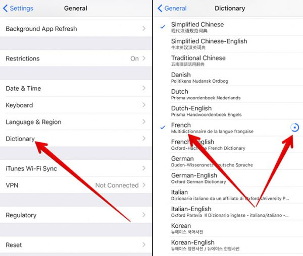 How to Download Dictionary on iOS 10