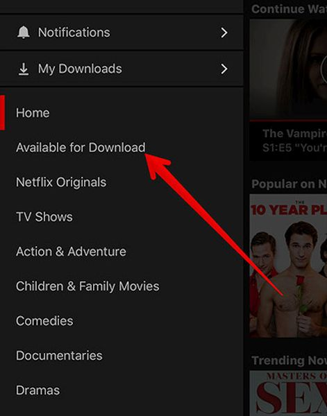 iPhone Netflix Videos Available for Download