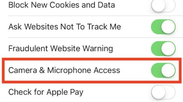 Safari Settings Camera & Microphone on iOS 11 Access